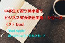 【ビジネス英会話Tips32 中学で習う英単語シリーズ(7)~Bad Appleとは~】